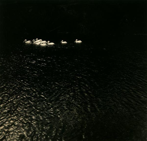 LakeConway.jpg