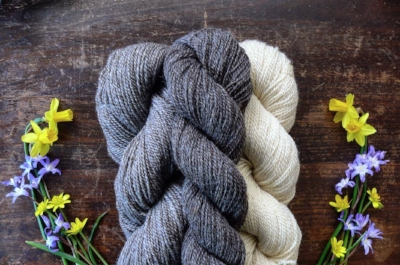 Plain Yarn is organic, undyed, local Romney Wool