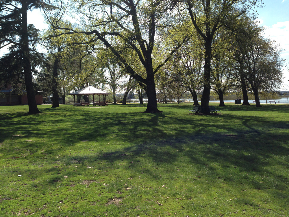 Parkland around Lake Wendouree