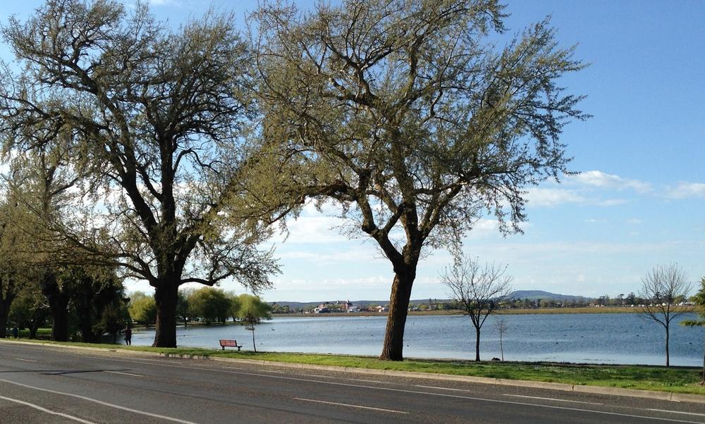 Lake Wendouree