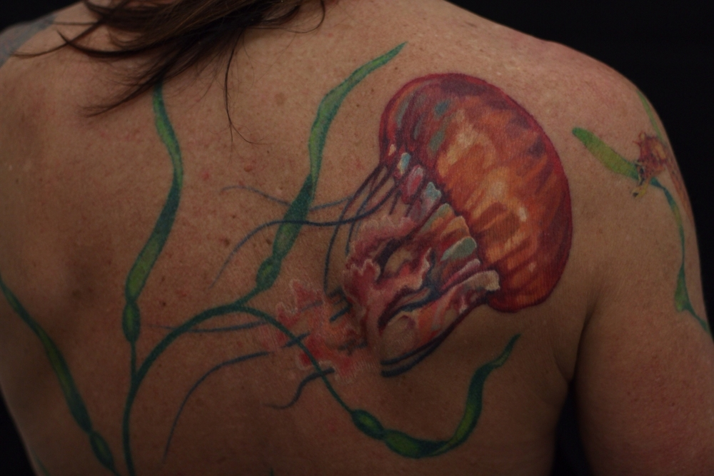 healed jellyfish tattoo.