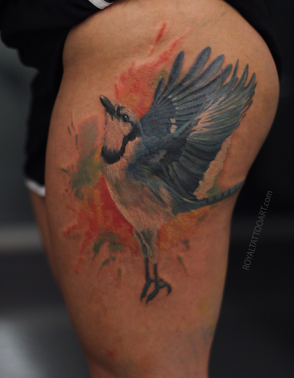 blue jay tattoo realistic water color nyc