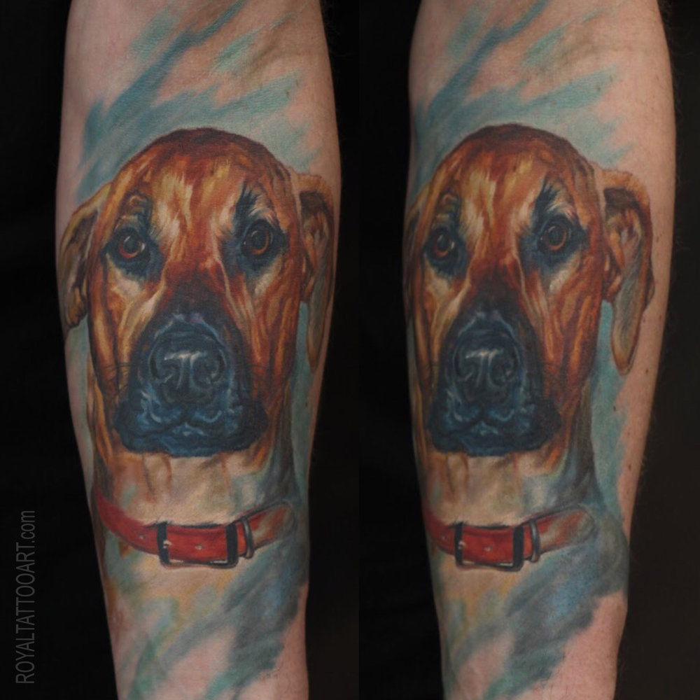 Memorial dog portrait color realistic boxer