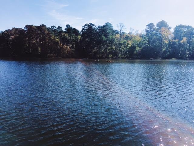 Huntsville State Park, Thanksgiving 2016