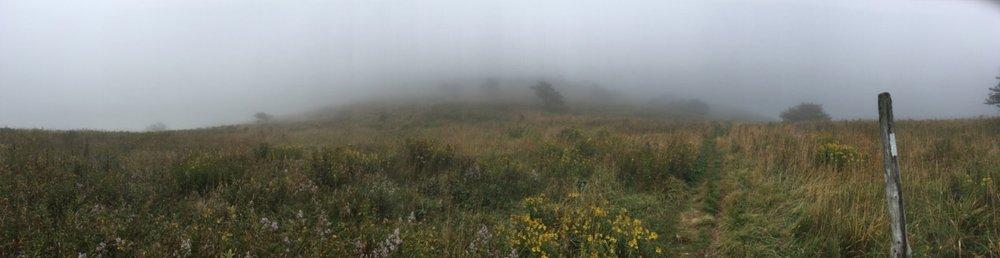 fog_roanHighlands_AT.jpg