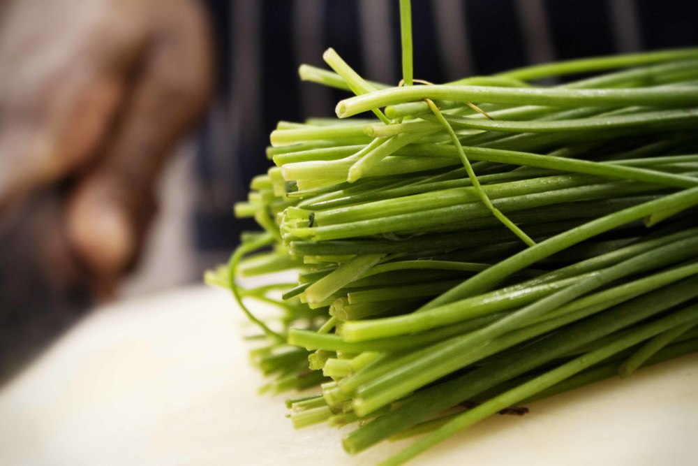 Spring onion 5.jpg