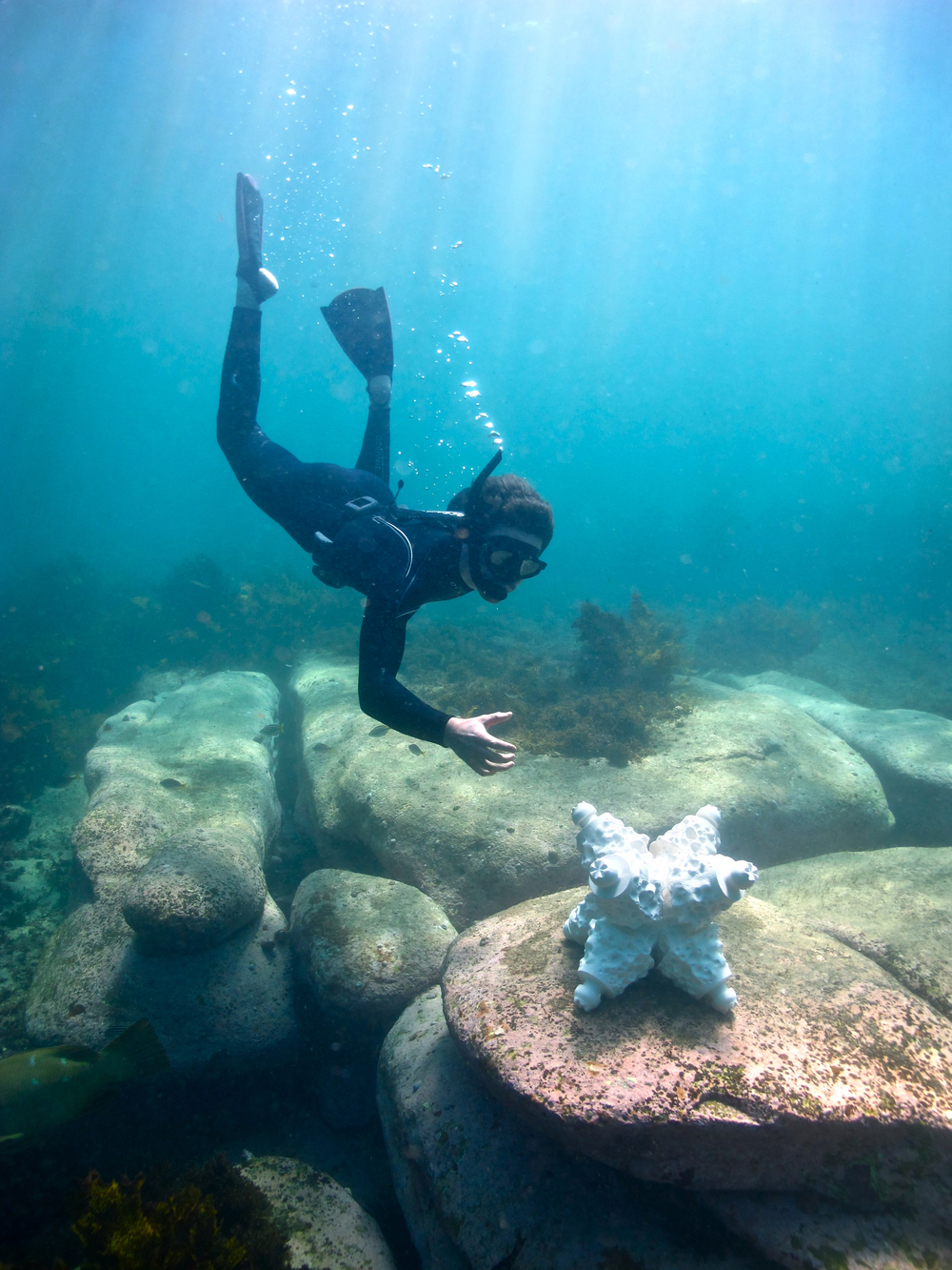 AlexGoad.DiverInstall.PhotoBy-HugoSands.jpg