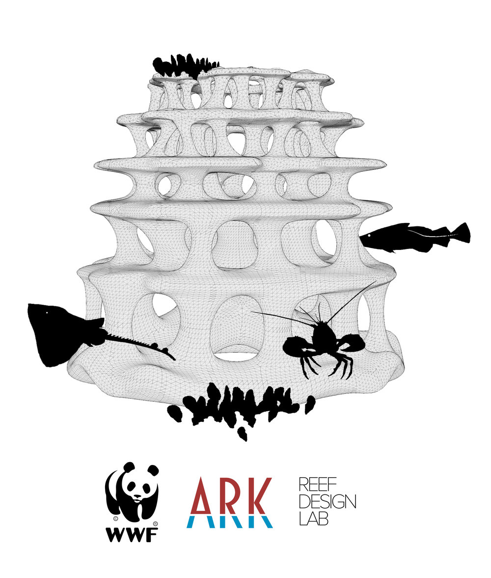 WWF T-shirt concept2 Graphic.jpg