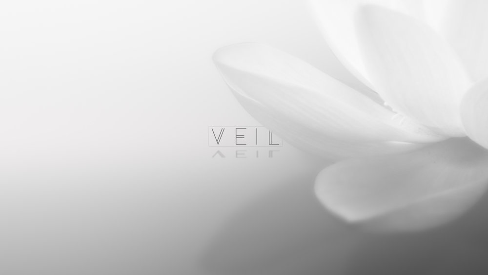 veil_frame_01.jpg