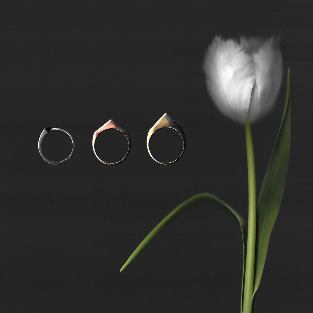 tulip trio.jpg