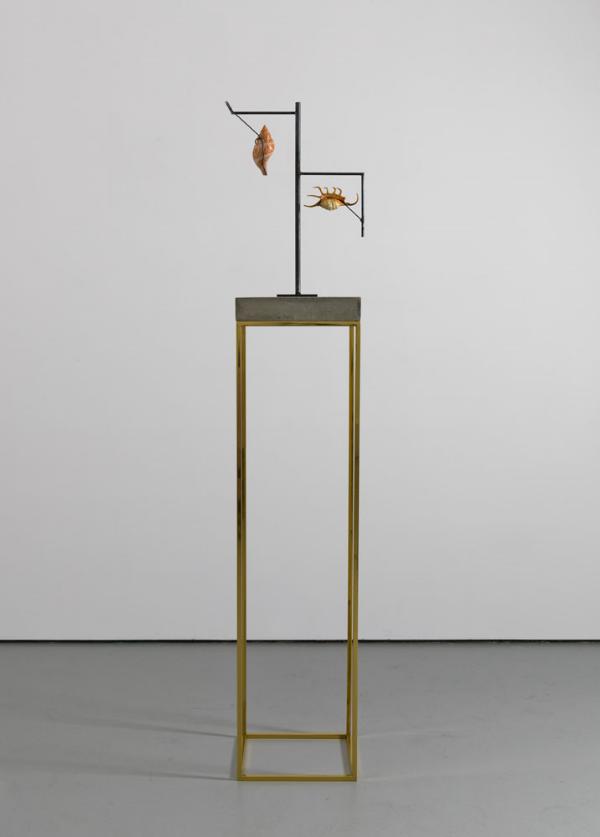 Carol Bove, Ascelpius, 2013