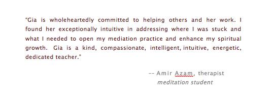 Amir testimonial.jpg
