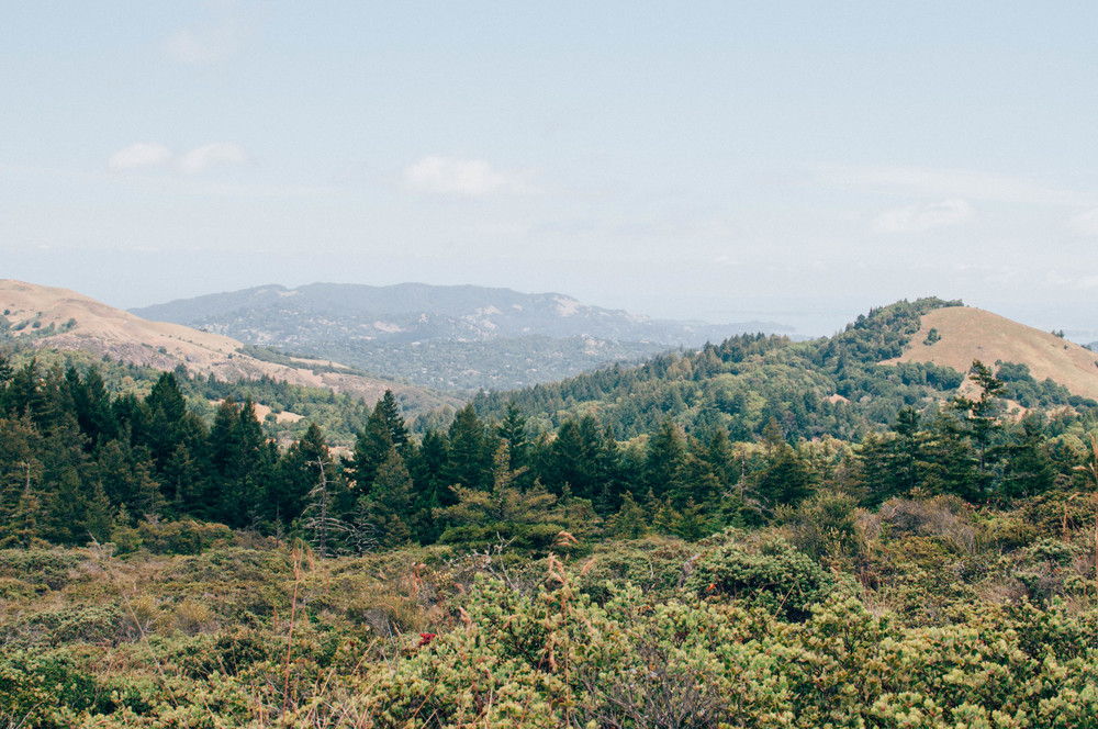 Bon Tempe Trail