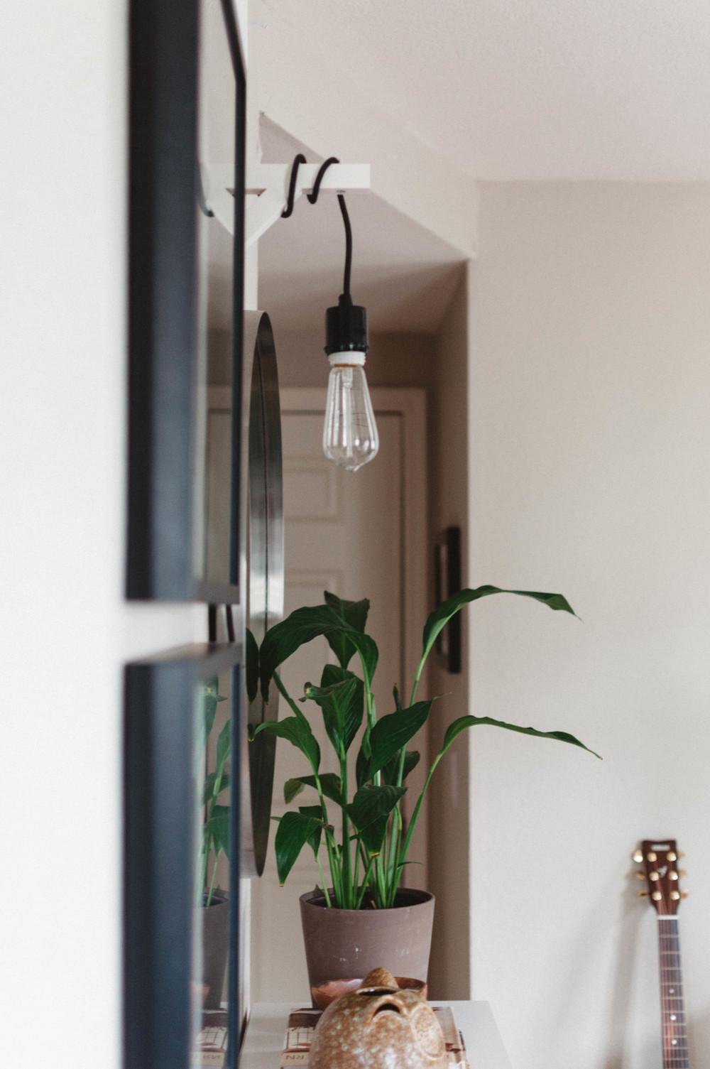Bare Edison Bulb Pendant Light