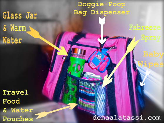 Suzie's (Labeled) Carry-On Airplane Travel Kit ~ August 2011