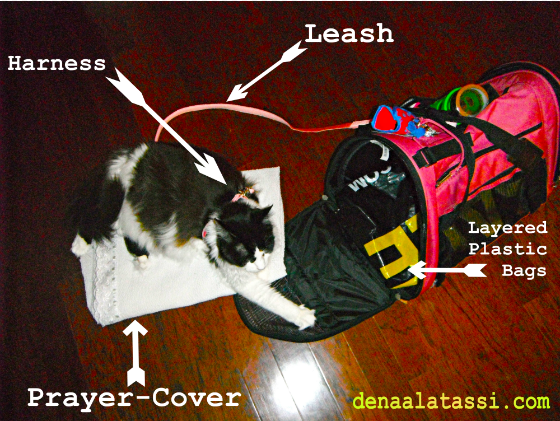 Suzie gets used to her Carry-On Supply Kit before Leaving FL to Riyadh, KSA ~ August 2011