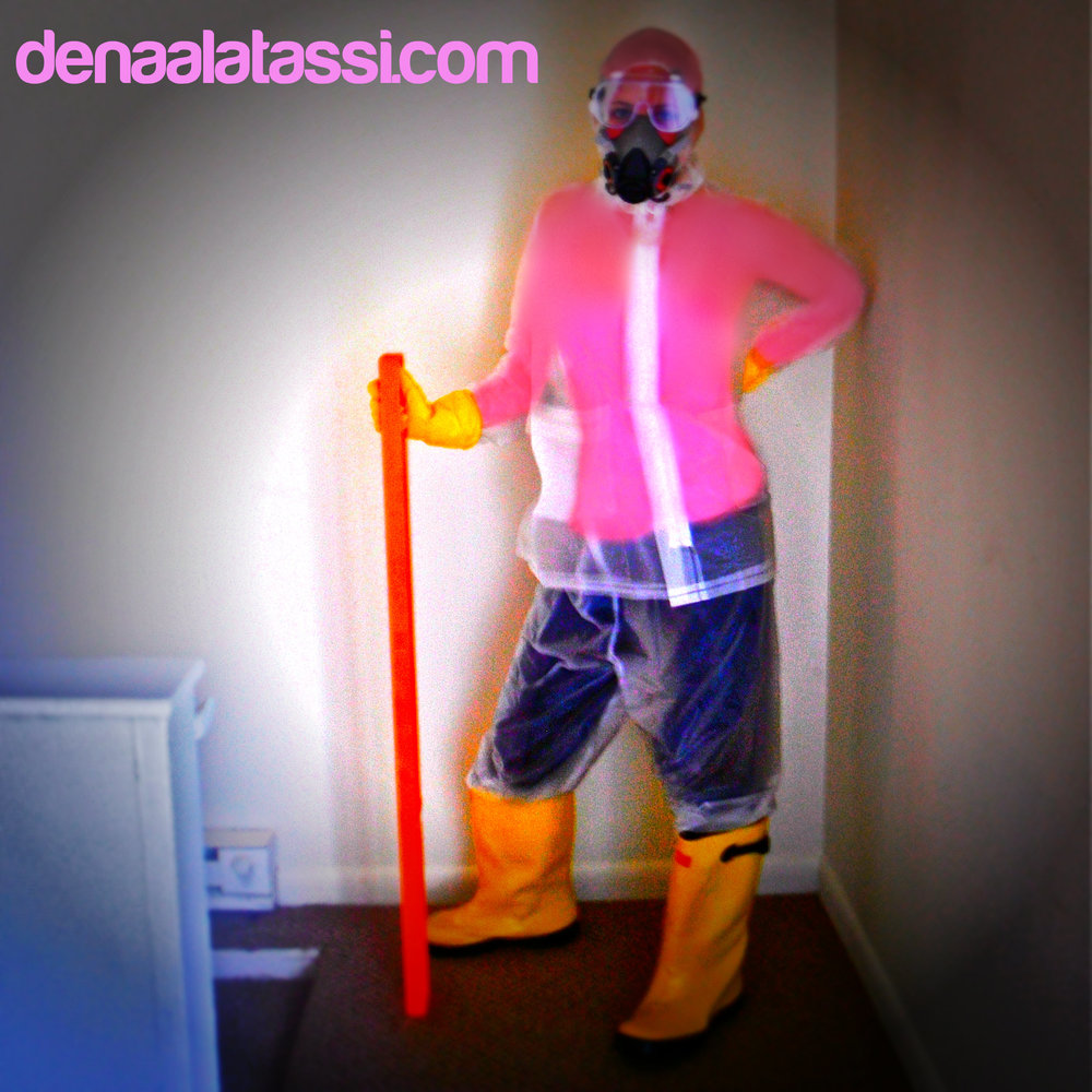 Preparing for a DIY Mold Attack via the Environmental Safety Standards ~ Nashville, TN Summer 2012