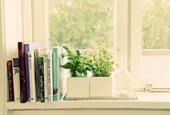 windowgarden-ccflcr-jesspac.jpg