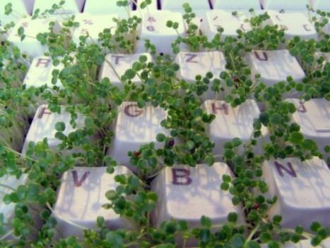 Image courtesy of safestudying.com