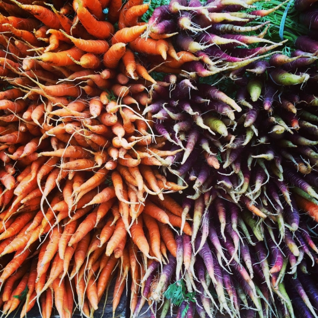 Colourful carrots.jpg