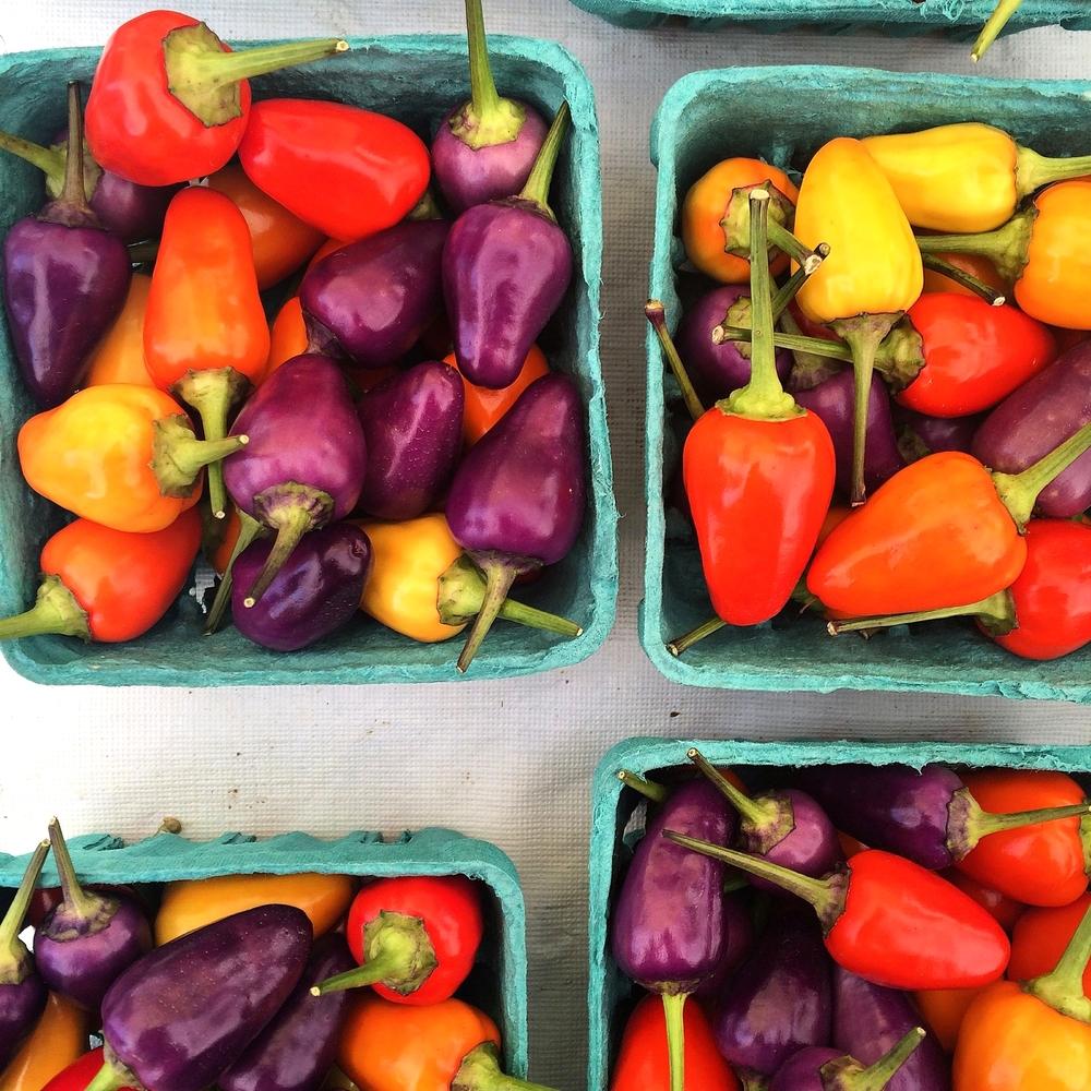 Rainbow peppers.JPG