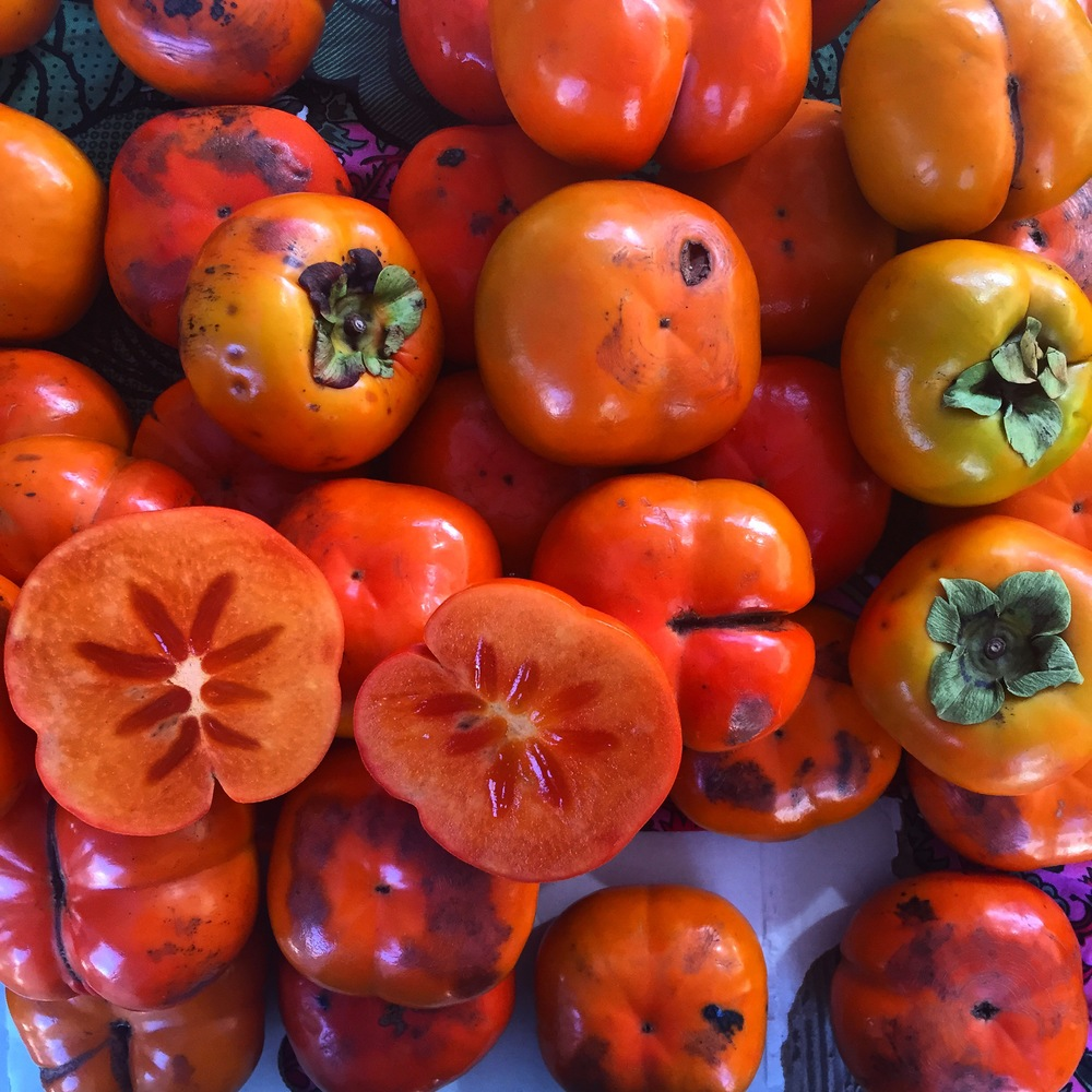 Persimmons are in season during May.