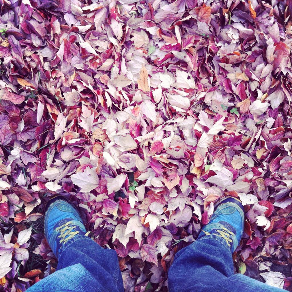Feets 'n Leaves