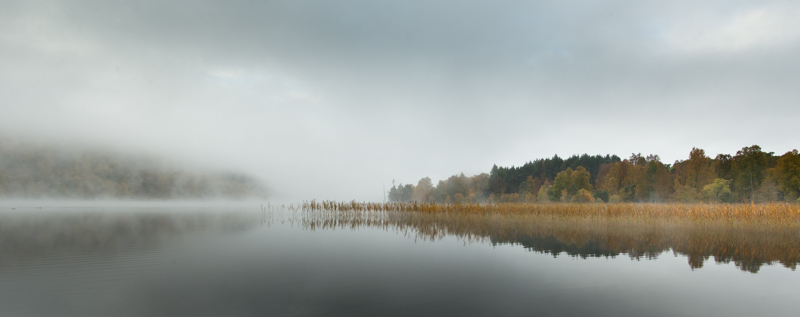Autumn Mist on Loch PItyoulish #1