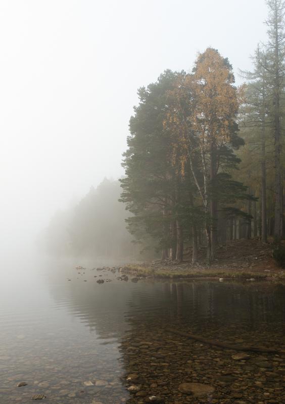 Loch an Eilein #3