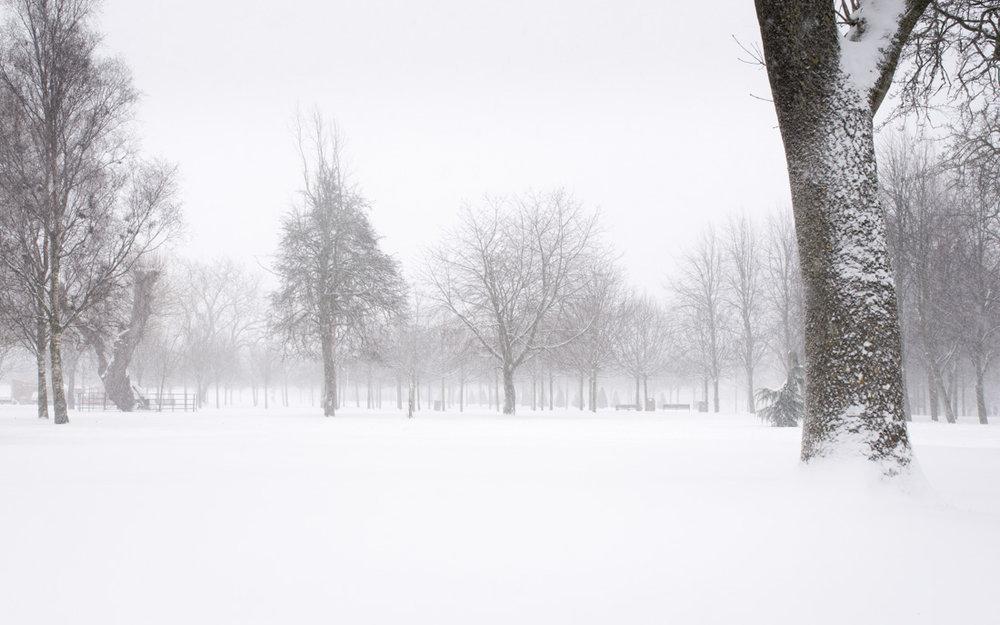 The Stillness of Snow