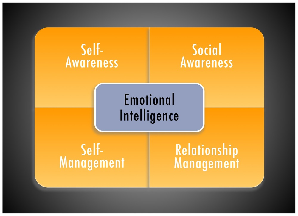Goleman, D; The Brain And Emotional Intelligence, 2011