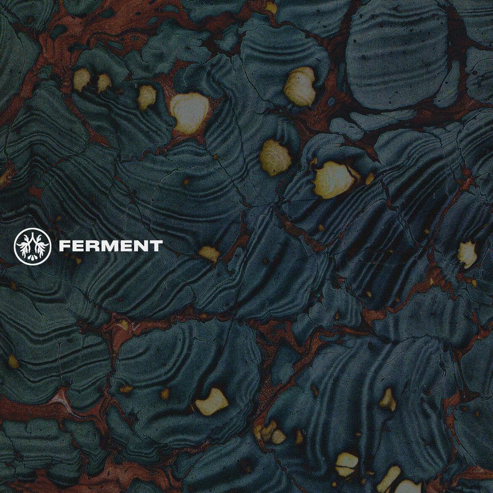 ltp_2_ferment.jpg
