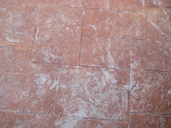 efflourescent-stamped-concret.jpg