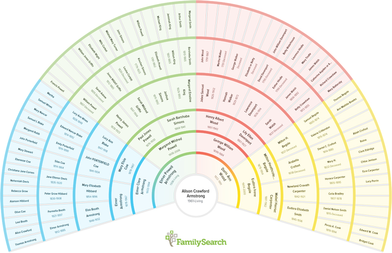 have you seen this   cool new genealogy charting tool