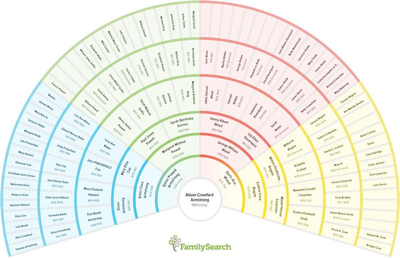 Genealogy charts free