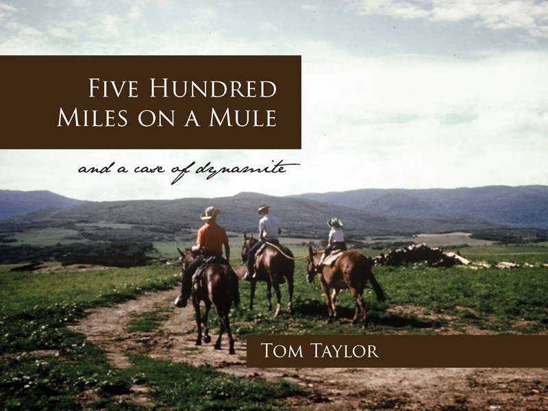 I made this book about my teenage ranch experiences in a weekend. Here's how I did it: