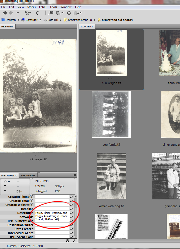 You can also type metadata directly into Bridge. If you have more than one photo selected, the info will appear with each selected photo.