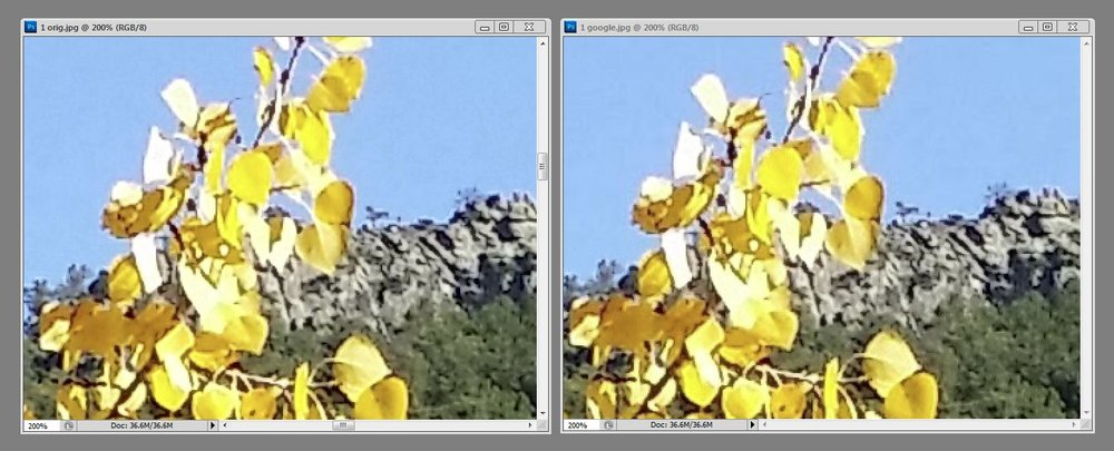 "Here's the same photo zoomed in 200%. This photo would look much better at this zoom if taken with a ""real"" camera, but the point is that the compressed photo on the right is virtually indistinguishable from the one on the left."