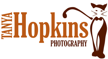 Tanya Hopkins Photography specializing in cat & dog photography on the Main Line, Kennett Square, Exton, Lititz, Malvern