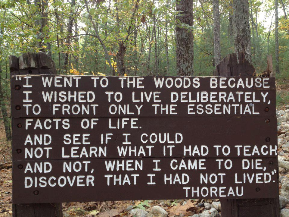 craving-to-escape :     Thoreau is such an inspiring man, I love him so much.