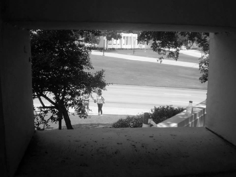 Photo 25- Western pergola window view of Elm Street B&W.jpg