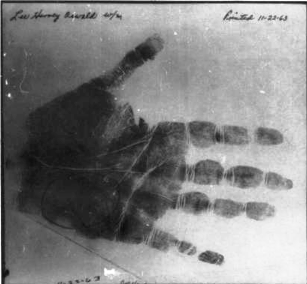 The palm print questioned by the Commission