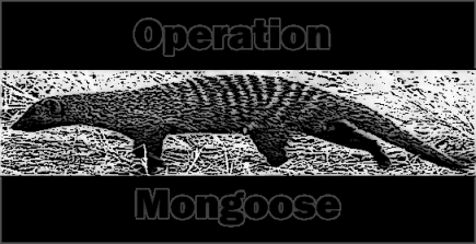 Operation Mongoose Graphic 2 sm.png