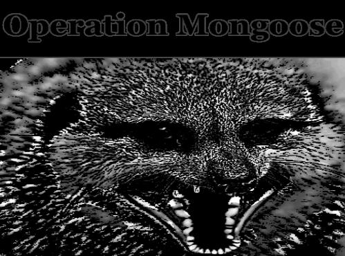 Mongoose Main Graphic.png