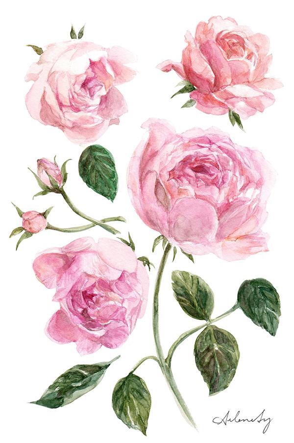 arlenesy-roses.jpg