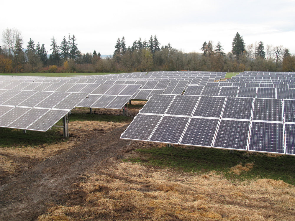Solar array in Oregon (Creative Commons)