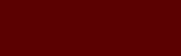 Der Meschkat Text im Kraushaar-Archiv hier