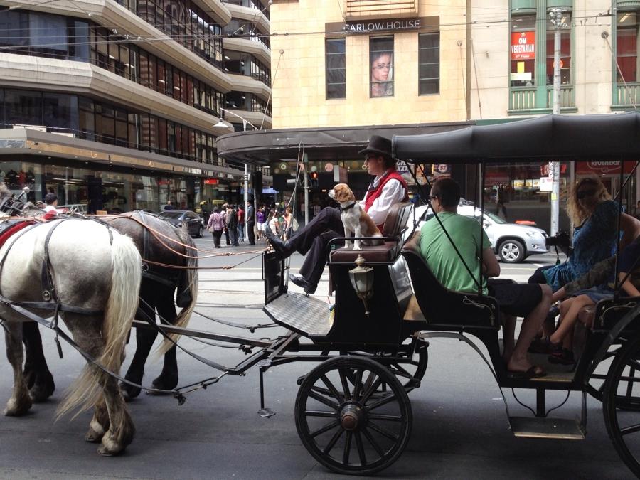 1_1_13 Australia_0019.jpg