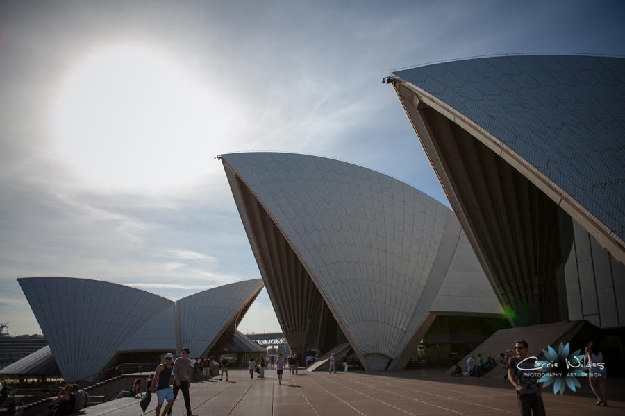 1_13 Australia01.jpg