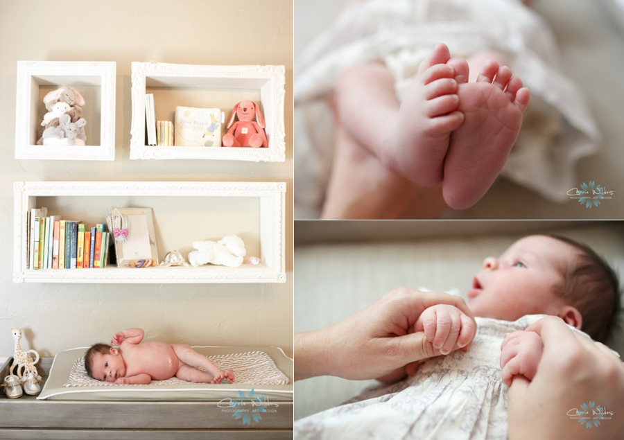 7_11_14 Tampa Newborn Session_0001.jpg